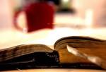 Essai, témoignage, fiction